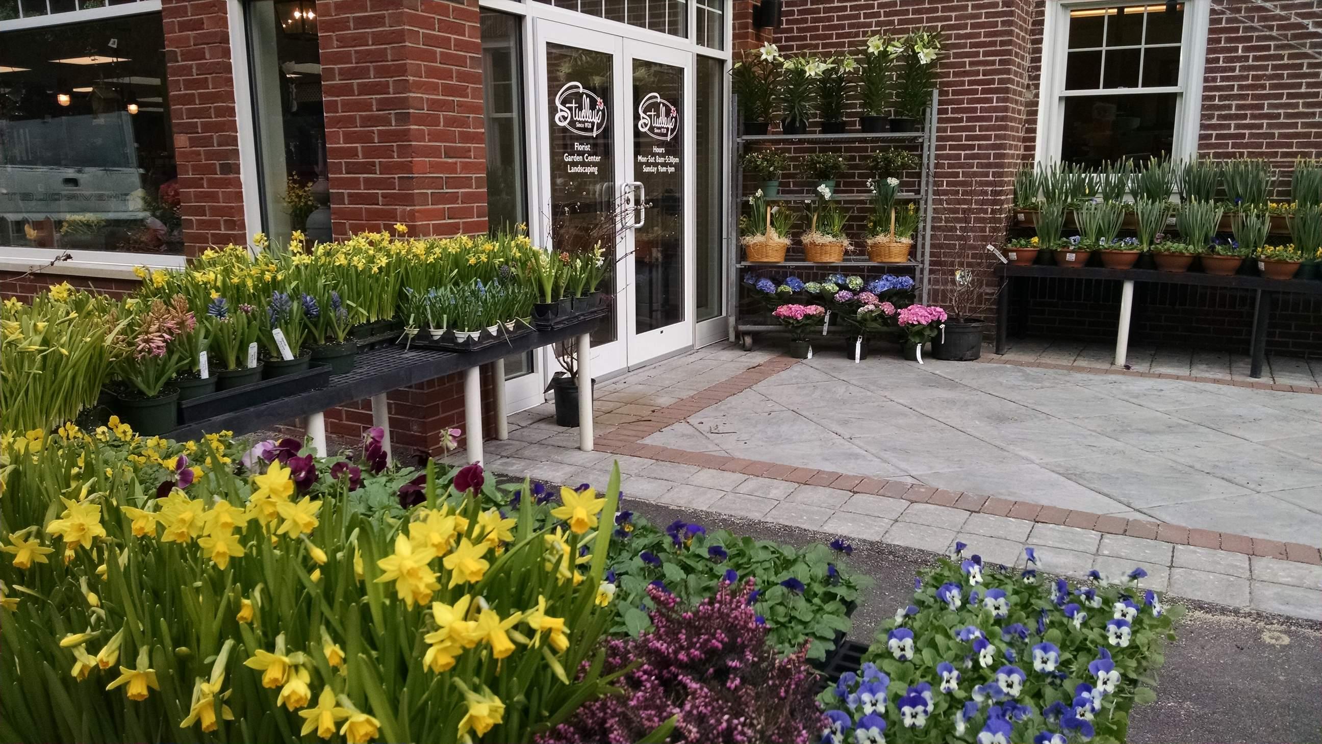 Studley Flower Gardens Garden Ftempo